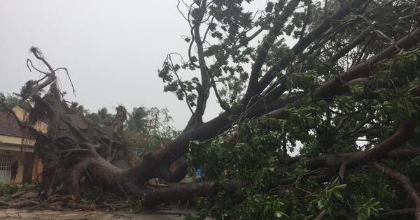 TRỰC TIẾP: Bão số 9 đã suy yếu thành áp thấp, hàng loạt nhà sập, tốc mái