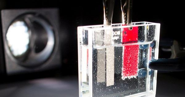 'Nhà máy' vi sinh vật tạo năng lượng sạch