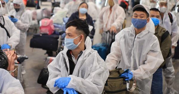 Đưa 340 công dân Việt Nam từ Nga về nước, cách ly tại Vân Đồn