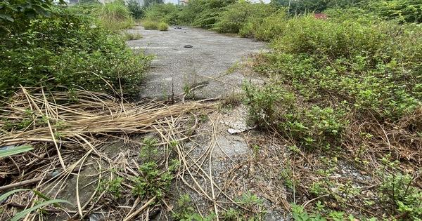 Cận cảnh lô đất vàng 11 năm bỏ hoang ở Hà Nội bị kiến nghị điều tra