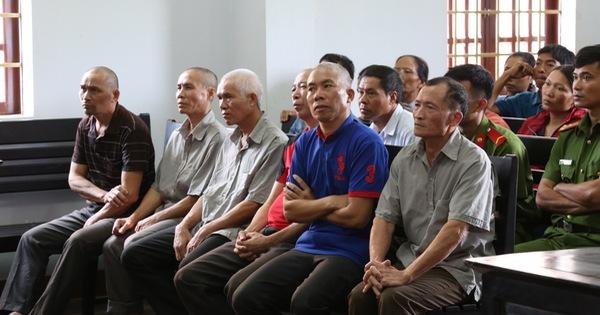 Hủy án 2 bản án 6 cựu chiến binh tham gia phá rừng