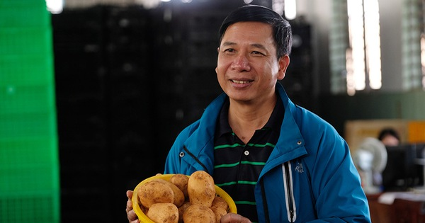 Ông Tuấn ''khoai tây''