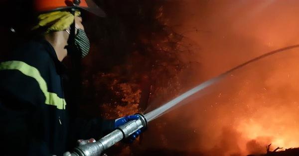 Lao mình vào lửa dữ cứu rừng xuyên đêm