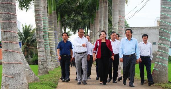 """Chủ tịch Quốc hội dạo """"đường cau đẹp nhất miền Tây"""", muốn phát triển đường ven biển ĐBSCL"""