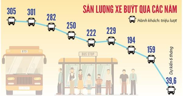 TP.HCM sẽ đấu thầu luồng tuyến xe buýt