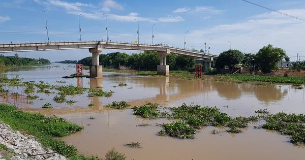 Mực nước các sông ĐBSCL đang lên, đỉnh lũ có thể cuối tháng 9