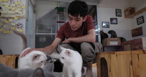 Ngôi nhà cứu những chú mèo ''bất hạnh'' của thanh niên Việt xuất hiện trên AFP