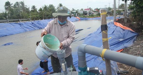 Sông Tiền đang tăng mặn bất ngờ, Tiền Giang gấp rút khoan giếng, đắp đập