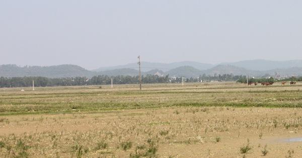 Khởi tố nguyên trưởng phòng tài nguyên - môi trường vì sai phạm về quản lý đất đai