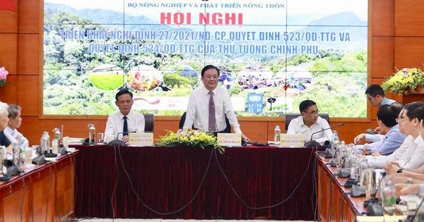 ''Bài học thất bại của cây phong lá đỏ trên đường phố Hà Nội vẫn còn đó''