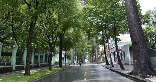 Tình yêu thành phố lấp lánh nơi những lời ca