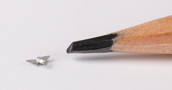 Mỹ chế tạo vi mạch 'nhỏ bằng hạt cát' để theo dõi mầm bệnh trong môi trường